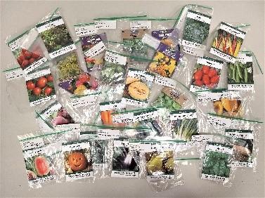 garden kit seeds